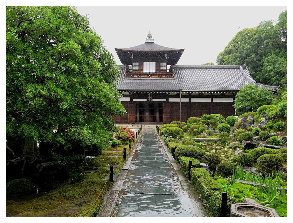 2017-06-21 東福寺:IMG_7016.JPG