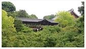 2017-06-21 東福寺:IMAG0227.jpg
