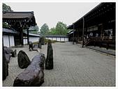 2017-06-21 東福寺:IMG_7062.JPG