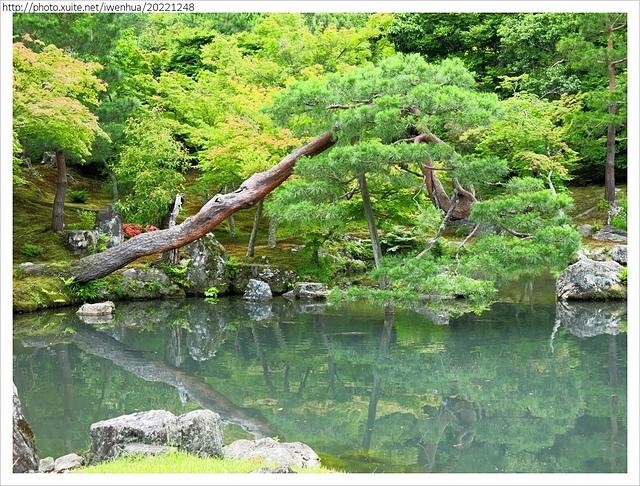 IMG_6312.JPG - 2017-06-18 嵐山-天龍寺-竹林