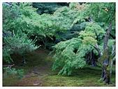 2017-06-21 東福寺:IMG_7030.JPG