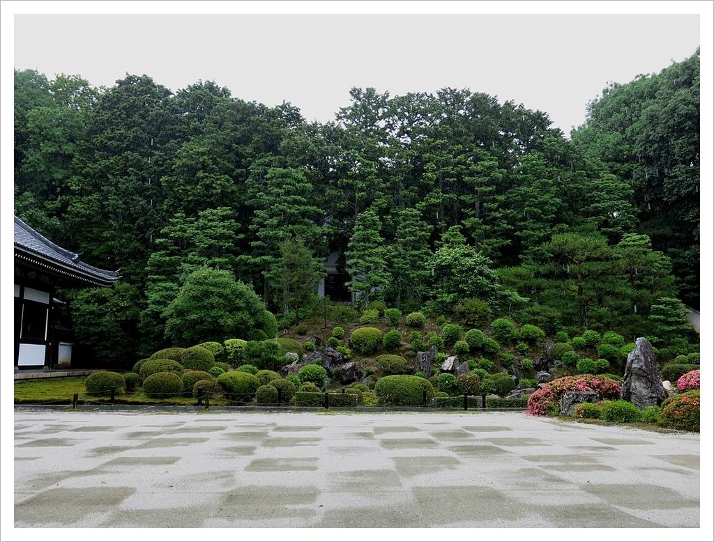 2017-06-21 東福寺:IMG_7010.JPG