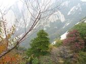 201210月西安及北京16日:10/8豐富樹林