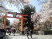 2014年3月25日櫻花日本之旅:IMG_20140409_132621.jpg