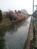 2014年3月25日櫻花日本之旅:IMG_20140410_124234.jpg