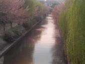 2014年3月25日櫻花日本之旅:IMG_20140410_164035.jpg