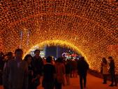 2013年台灣燈會:P1100307.JPG