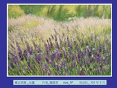 2012年6月西畫展:投影片15.JPG