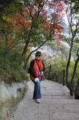 201210月西安及北京16日:10/8這裡也有零星紅葉