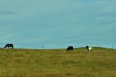 【北歐旅記】冰島-順遊隕石坑潭:DSC_7425.JPG