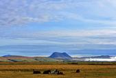 【北歐旅記】冰島-往塞里雅蘭瀑布Seljalandsfoss途中:DSC_7514.JPG