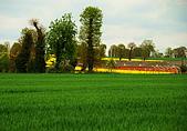 布列塔尼的田園之美 (法國遊蹤之6) :DSC_0423.jpg