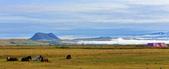 【北歐旅記】冰島-往塞里雅蘭瀑布Seljalandsfoss途中:DSC_7517 - 複製.JPG