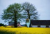 布列塔尼的田園之美 (法國遊蹤之6) :DSC_0346.jpg