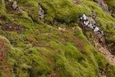 【北歐旅記】冰島- Geysir蓋錫爾間歇噴泉地熱公園(三)- 登高望遠:DSC_7325.JPG
