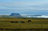【北歐旅記】冰島-往塞里雅蘭瀑布Seljalandsfoss途中:DSC_7519.JPG