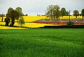 布列塔尼的田園之美 (法國遊蹤之6) :DSC_0428.jpg