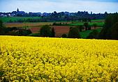 布列塔尼的田園之美 (法國遊蹤之6) :DSC_0348.jpg