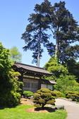 舊金山的一天(二)花園之美--【漫遊美西30日】:_KCF6631.JPG