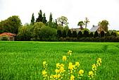 布列塔尼的田園之美 (法國遊蹤之6) :DSC_0429.jpg