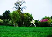 布列塔尼的田園之美 (法國遊蹤之6) :DSC_0351.jpg
