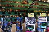 魅力小城 聖雷米德市集 普羅旺斯.巴士一日遊 之三 (遊法旅記之三十九):DSC_3052.jpg