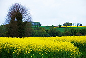布列塔尼的田園之美 (法國遊蹤之6) :DSC_0352.jpg