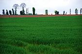 布列塔尼的田園之美 (法國遊蹤之6) :DSC_0353.jpg