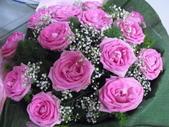 花卉:CIMG2209