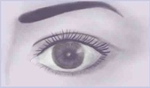 PS:眼睛繪畫2.jpg