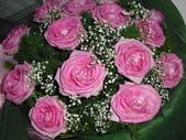 花卉:CIMG2210