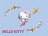 花卉:1228-kitty12.jpg