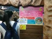 20180619-28沖繩、北海道生日遊:4.jpg.jpg