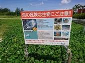 20180619-28沖繩、北海道生日遊:12.jpg.jpg