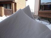 暴風雪:花圃中的金字塔