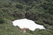 生態公益假期--濕地守護:1484600227.jpg
