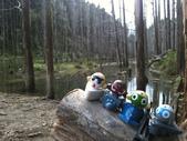 2011 水漾森林:1935360394.jpg