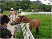 2014年暑期旅遊:富田花園農場:富田花園農場164.jpg