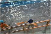 2014年暑假旅遊:松運水球大賽:松運水球大賽145.jpg