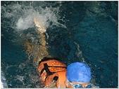 2014年暑假旅遊:松運水球大賽:松運水球大賽029.jpg