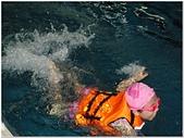 2014年暑假旅遊:松運水球大賽:松運水球大賽025.jpg