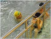 2014年暑假旅遊:松運水球大賽:松運水球大賽077.jpg