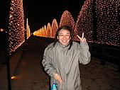 台南燈會:42