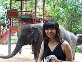 泰國之旅~PART 2:P1040674