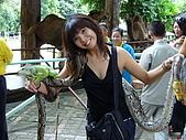 泰國之旅~PART 2:P1040723