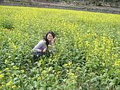 花東-縱谷花海之美:P1190711.JPG