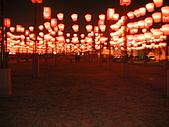 台南燈會:44