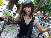 泰國之旅~PART 2:P1040724