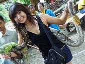 泰國之旅~PART 2:P1040725