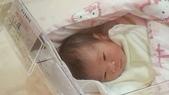 2013.09生活隨手紀錄:IMG_3941.JPG